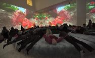 Pipilotti Rist's video, Pour Your Body Out, MOMA 2008